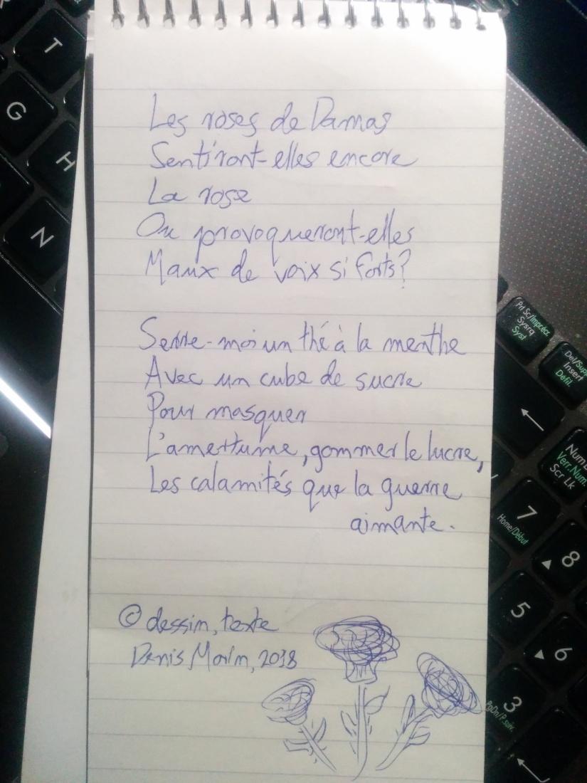IMG_20180905_214322[11436]-Les roses de Damas