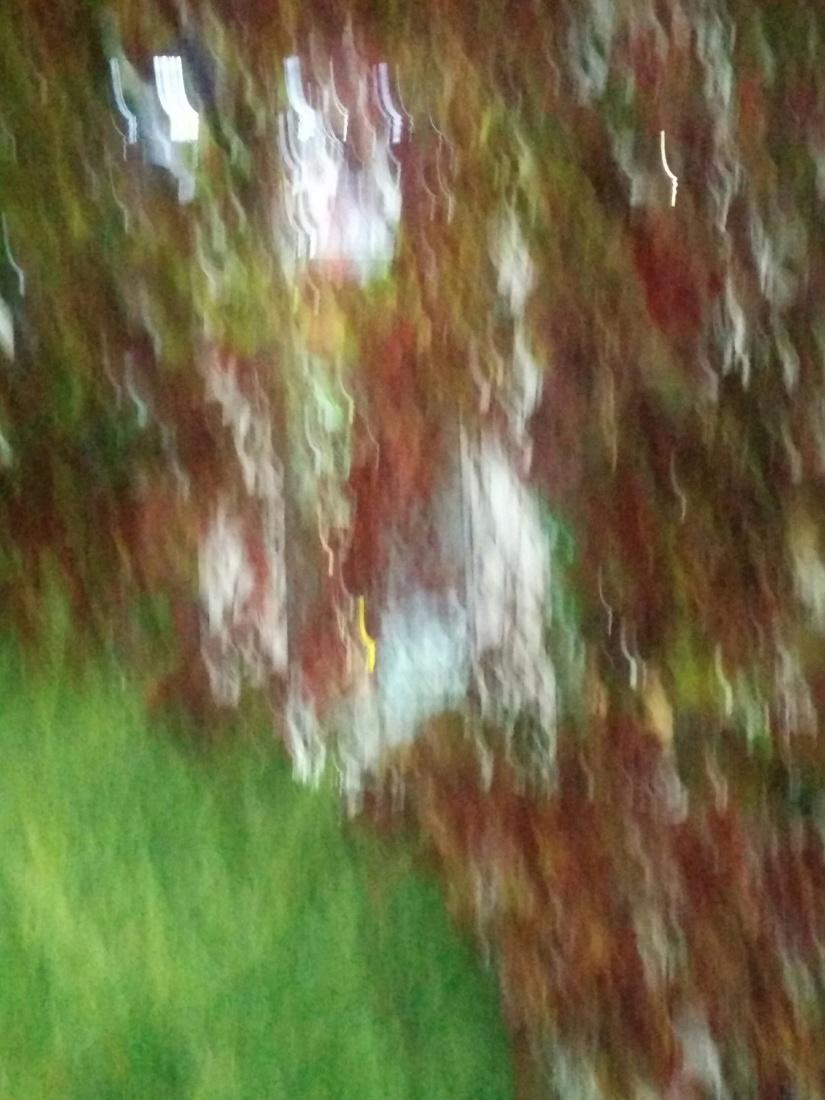 Fenetre floue