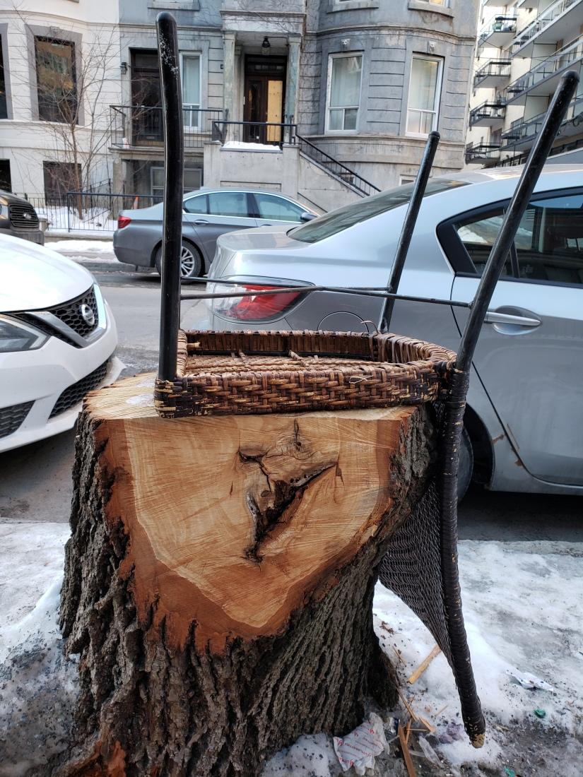 Arbre-chaise