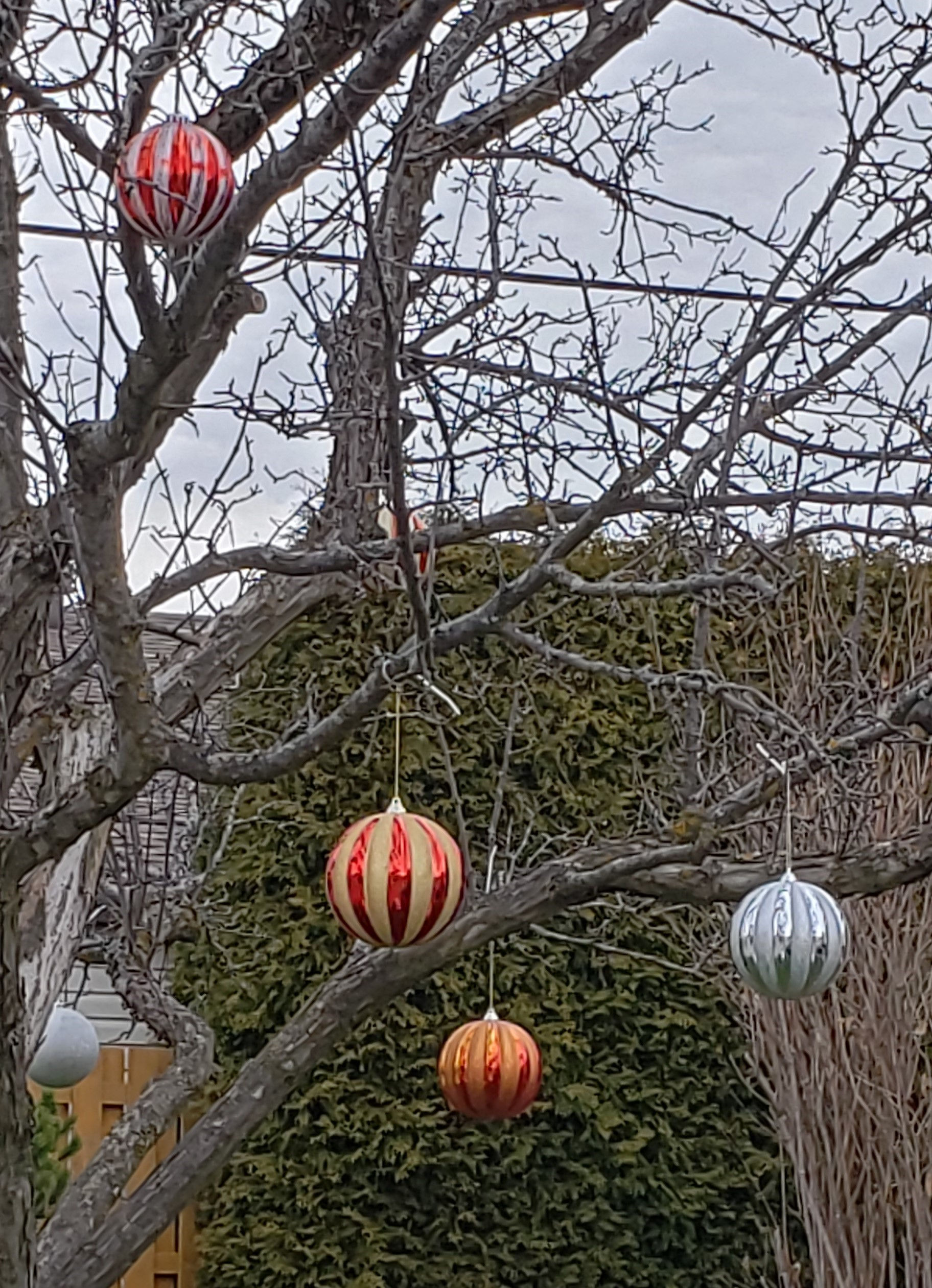 Boules de Noel (2)